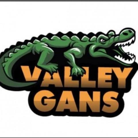 Valleygans